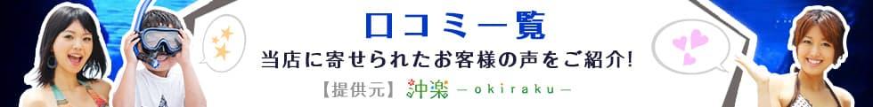 慶良間ダイビング・ウミガメツアー口コミ|沖楽